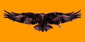 Путь Ворона